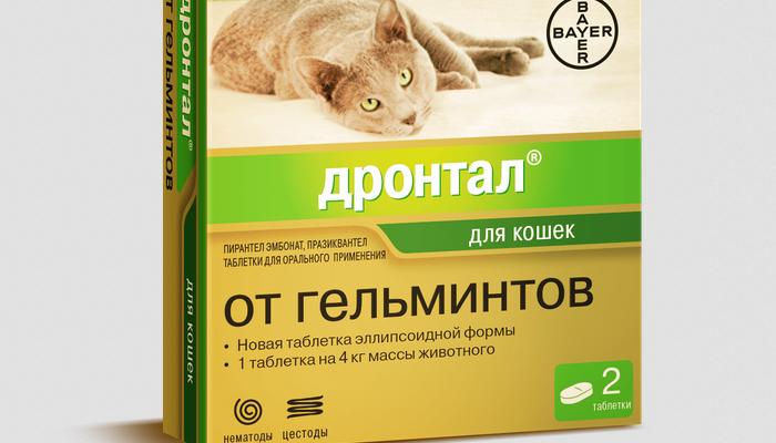 дронтал от глистов для кошек