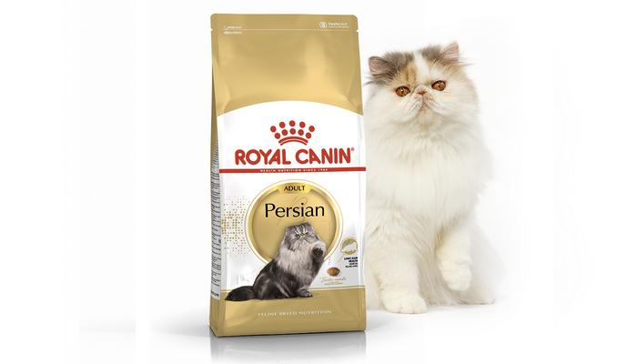 роял канин корм для персидских кошек